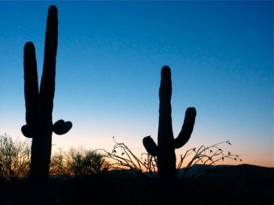 The stunning Arizona landscape at twilight